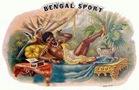 Bengal-Sport-vintage-cigar-label1