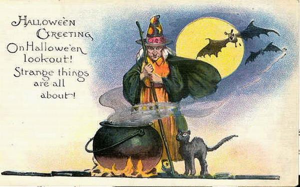 halloween witch black cat cauldron postcard - Vintage Halloween Witches