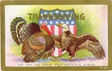 Thanksgiving-turkey-American-eagle-postcard