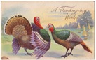 two vintage Thanksgiving turkeys male and female