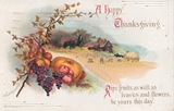 Victorian-Thanksgiving-harvest-bounty-house-farm-postcard