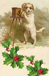 vintage-Christmas-card-dog-camera