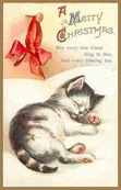 vintage-Christmas-card-kitten-red-ribbon