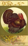 vintage Thanksgiving cards turkey in circle