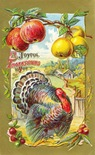 vintage Thanksgiving cards turkey wth fruit