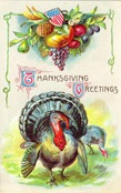 vintage-Thanksgiving-harvest-turkey-postcard