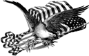 free vintage American eagle and flag clip art