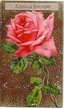 free vintage birthday card pink rose