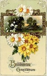 free vintage birthday cards white and yellow daisies