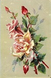 free vintage clip art spray of pink roses