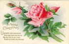 free vintage pink rose clipart with greeting