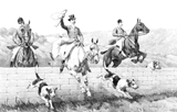 tally ho vintage horse coloring page