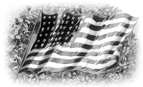 american flag clip art animated. animated american flag clip