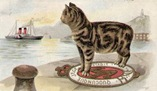 vintage cat by the sea clip art