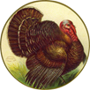 vintage Thanksgiving clipart turkey in circle