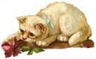 free vintage cat clip art white with pink rose