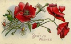 free vintage mothers day cards red poppies