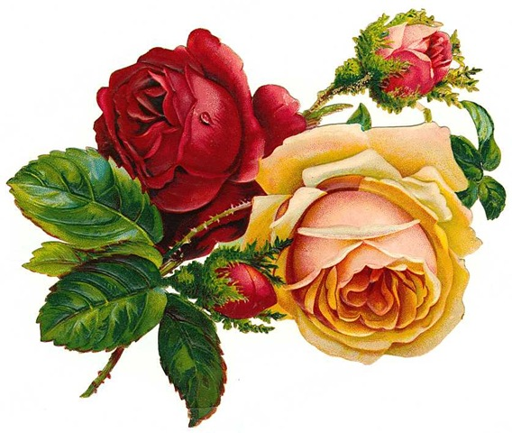 http://vintageholidaycrafts.com/wp-content/uploads/2009/03/free-vintage-roses-red-and-yellow-with-buds.jpg