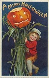 vintage-Halloween-pumpkin-little-boy-harvest-postcard