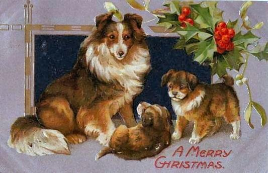 vintage christmas card collie dog puppies holly