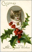 vintage-christmas-cards-holly-striped-brown-cat