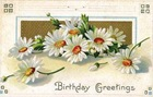 free vintage birthday card white daisies