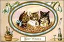 vintage happy new year cards three cats champagne