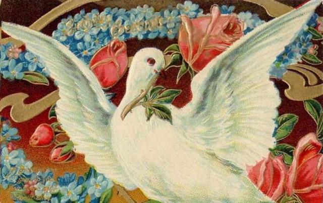 Законным бракосочетанием, голубки на открытках
