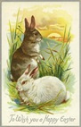 free vintage easter bunnies overlooking sunset greeting card