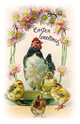 free vintage Easter clip art chicken chicks and daisy border