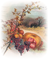 Victorian-Thanksgiving-harvest-bounty-house-farm-clip-art