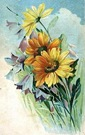 free vintage mothers day card yellow daisies and bluebells