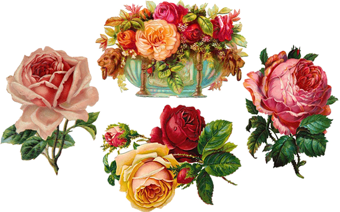 Free Clip Art: Vintage Roses